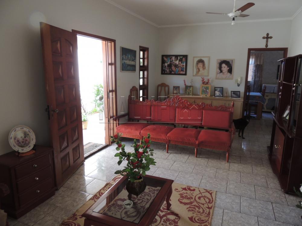 Comprar Casas / Padrão em Olímpia apenas R$ 320.000,00 - Foto 2