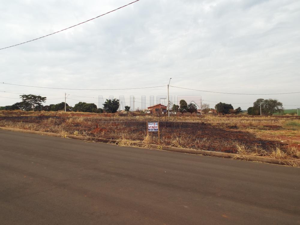 Comprar Terrenos / Padrão em Olímpia apenas R$ 75.000,00 - Foto 1