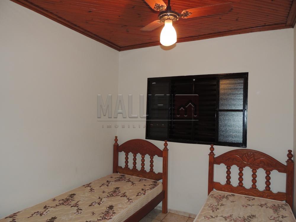 Comprar Casas / Mobiliadas em Olímpia - Foto 4