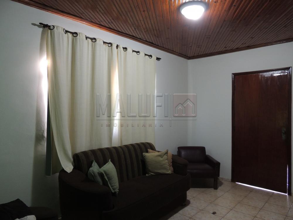Comprar Casas / Mobiliadas em Olímpia - Foto 1