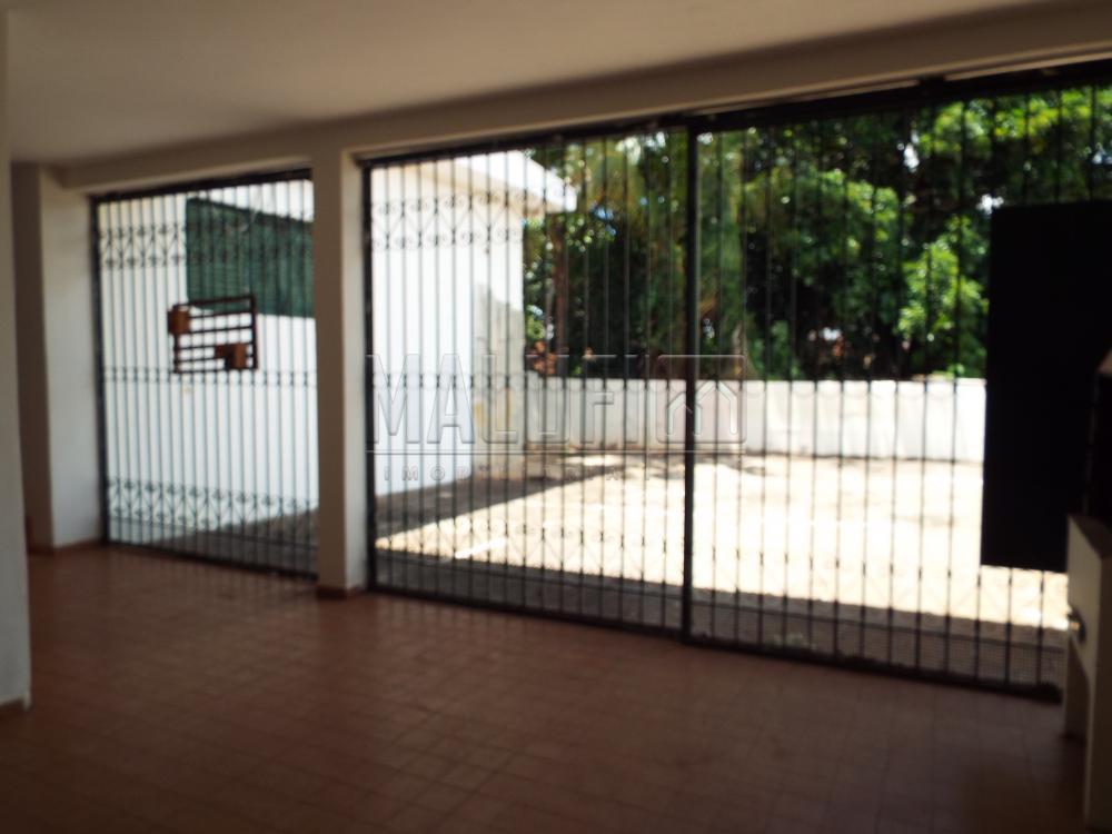 Alugar Casas / Padrão em Olímpia apenas R$ 2.200,00 - Foto 3