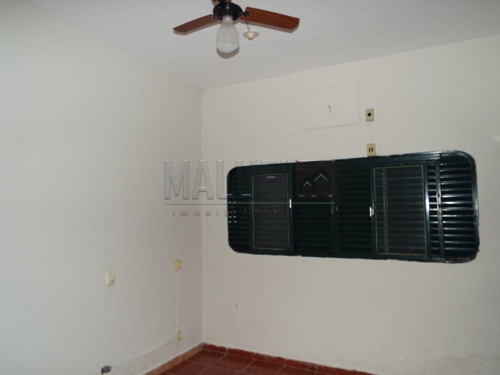 Alugar Casas / Padrão em Olímpia apenas R$ 2.200,00 - Foto 10