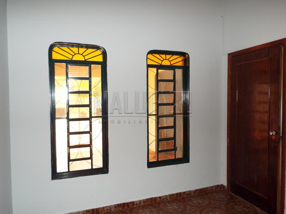 Alugar Casas / Padrão em Olímpia apenas R$ 2.200,00 - Foto 18
