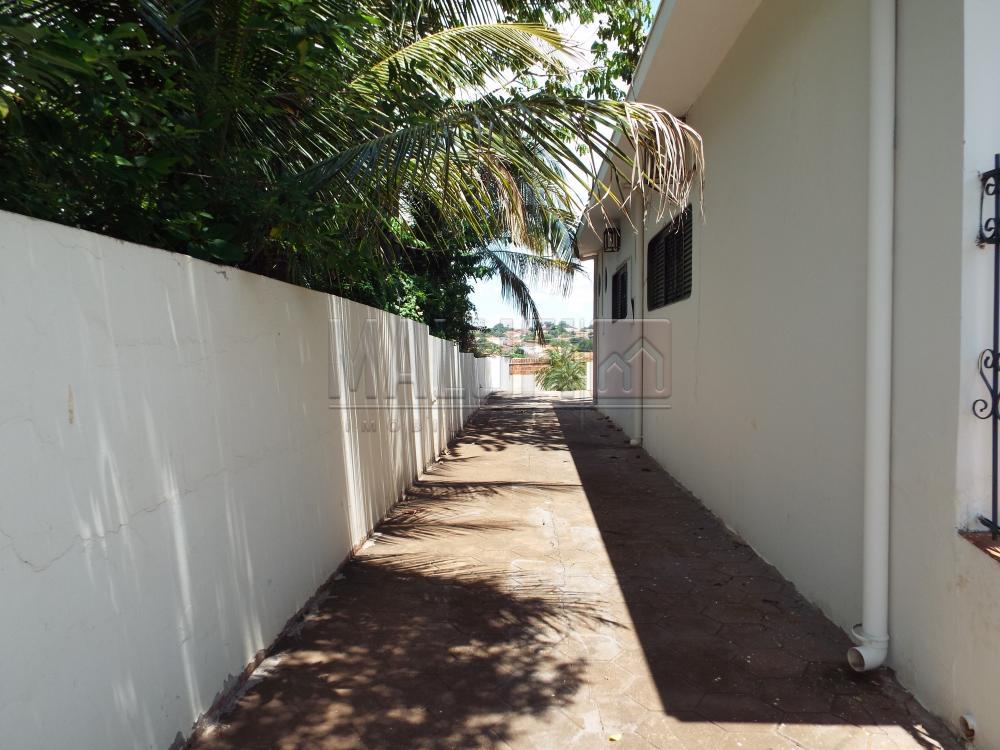 Alugar Casas / Padrão em Olímpia apenas R$ 2.200,00 - Foto 25