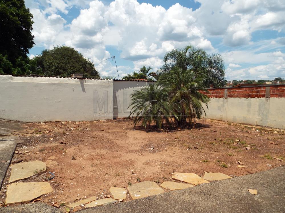 Alugar Casas / Padrão em Olímpia apenas R$ 2.200,00 - Foto 30
