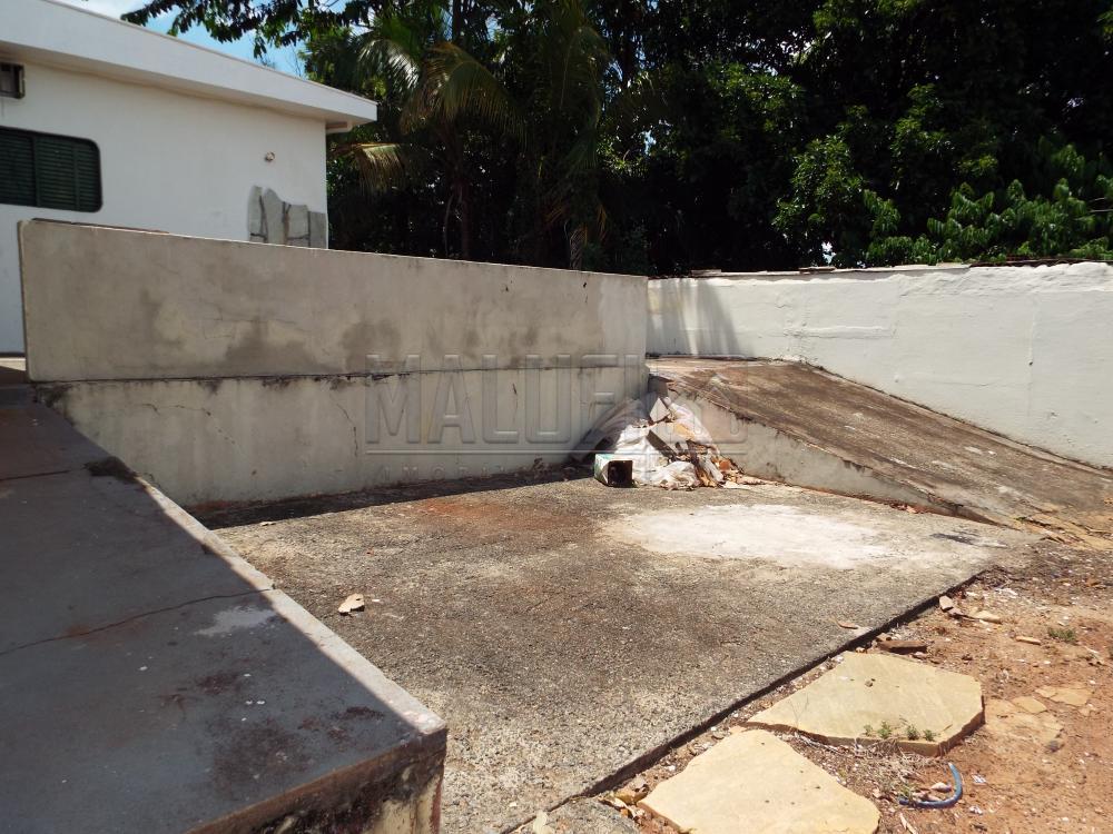 Alugar Casas / Padrão em Olímpia apenas R$ 2.200,00 - Foto 31