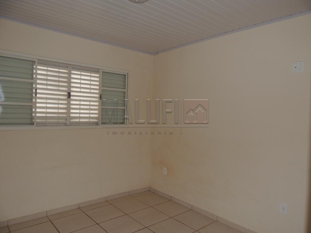Alugar Casas / Padrão em Olímpia apenas R$ 1.200,00 - Foto 4