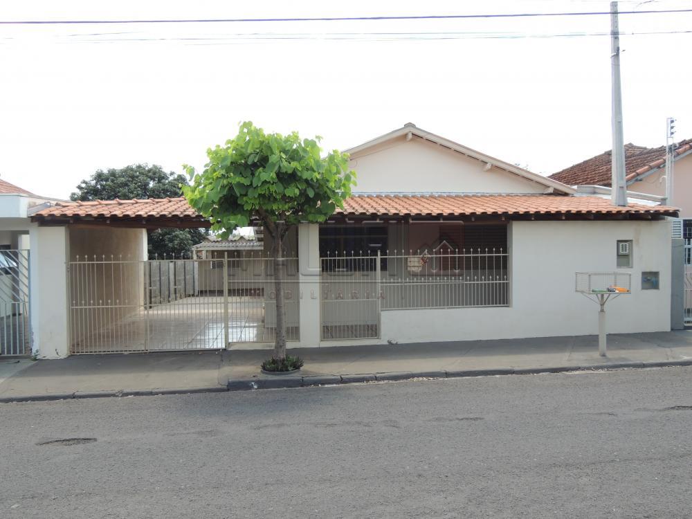Alugar Casas / Padrão em Olímpia apenas R$ 1.300,00 - Foto 1