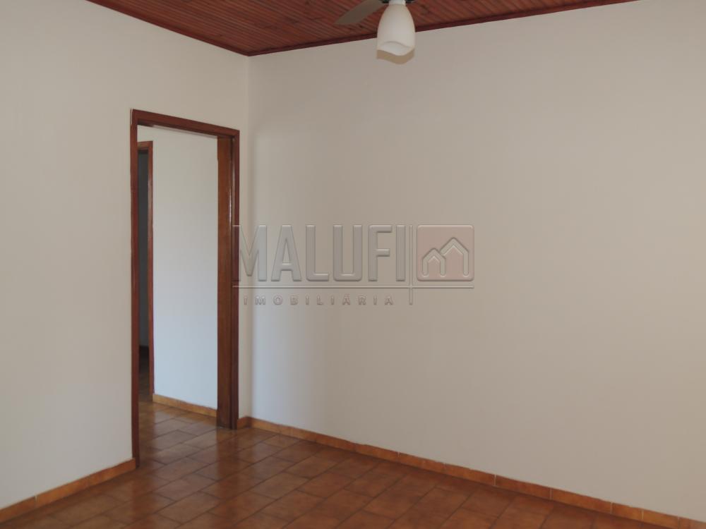 Alugar Casas / Padrão em Olímpia apenas R$ 1.300,00 - Foto 4