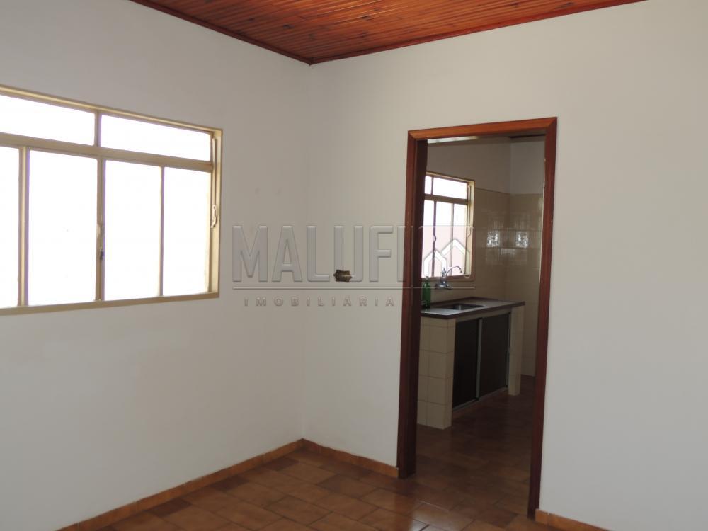Alugar Casas / Padrão em Olímpia apenas R$ 1.300,00 - Foto 5