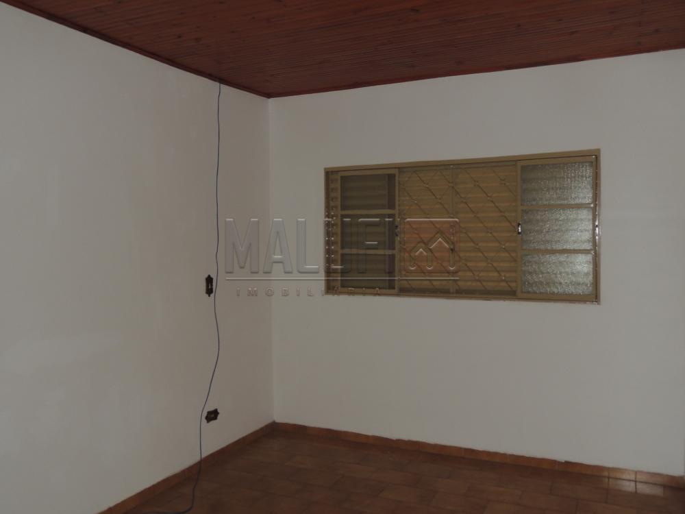 Alugar Casas / Padrão em Olímpia apenas R$ 1.300,00 - Foto 7