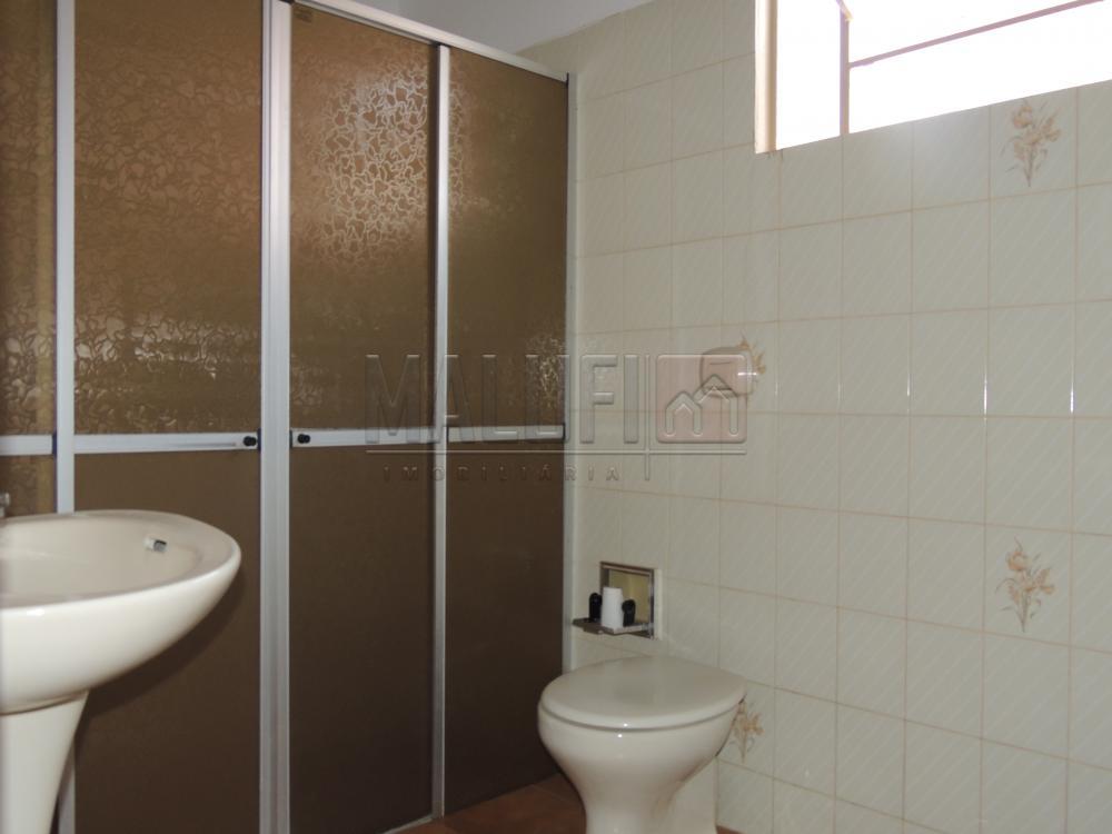 Alugar Casas / Padrão em Olímpia apenas R$ 1.300,00 - Foto 8