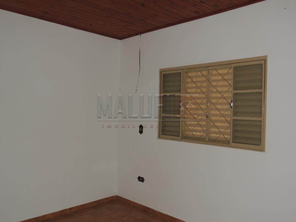 Alugar Casas / Padrão em Olímpia apenas R$ 1.300,00 - Foto 9