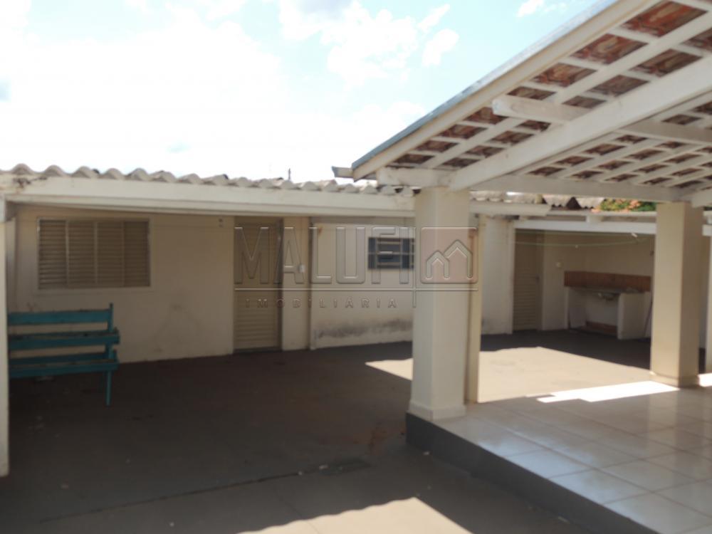 Alugar Casas / Padrão em Olímpia apenas R$ 1.300,00 - Foto 13