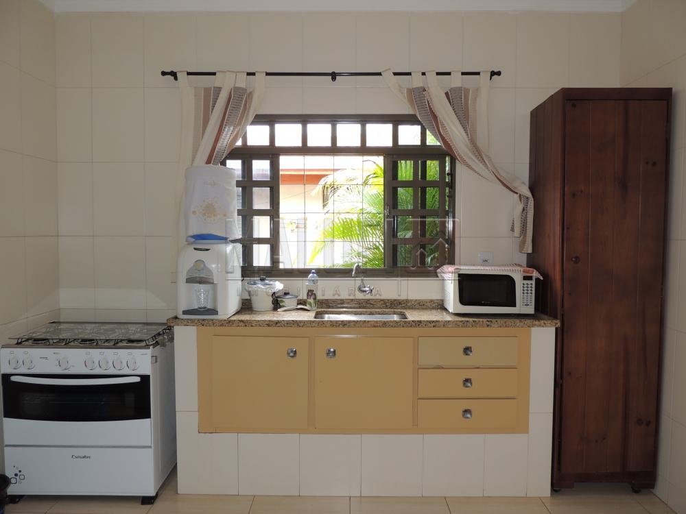 Alugar Casas / Mobiliadas em Olímpia apenas R$ 3.000,00 - Foto 7