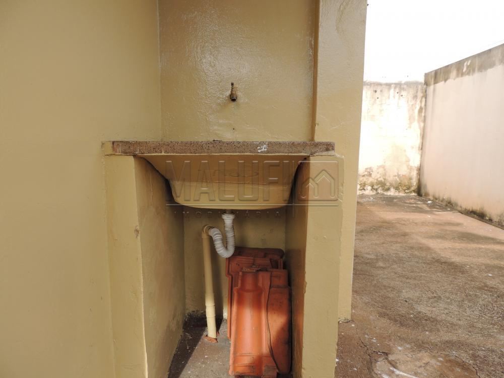 Alugar Casas / Padrão em Olímpia apenas R$ 800,00 - Foto 10