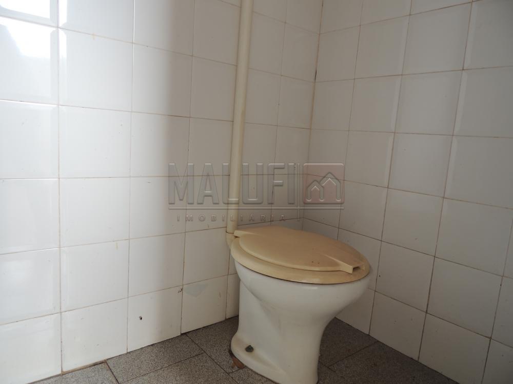 Alugar Casas / Padrão em Olímpia apenas R$ 800,00 - Foto 8