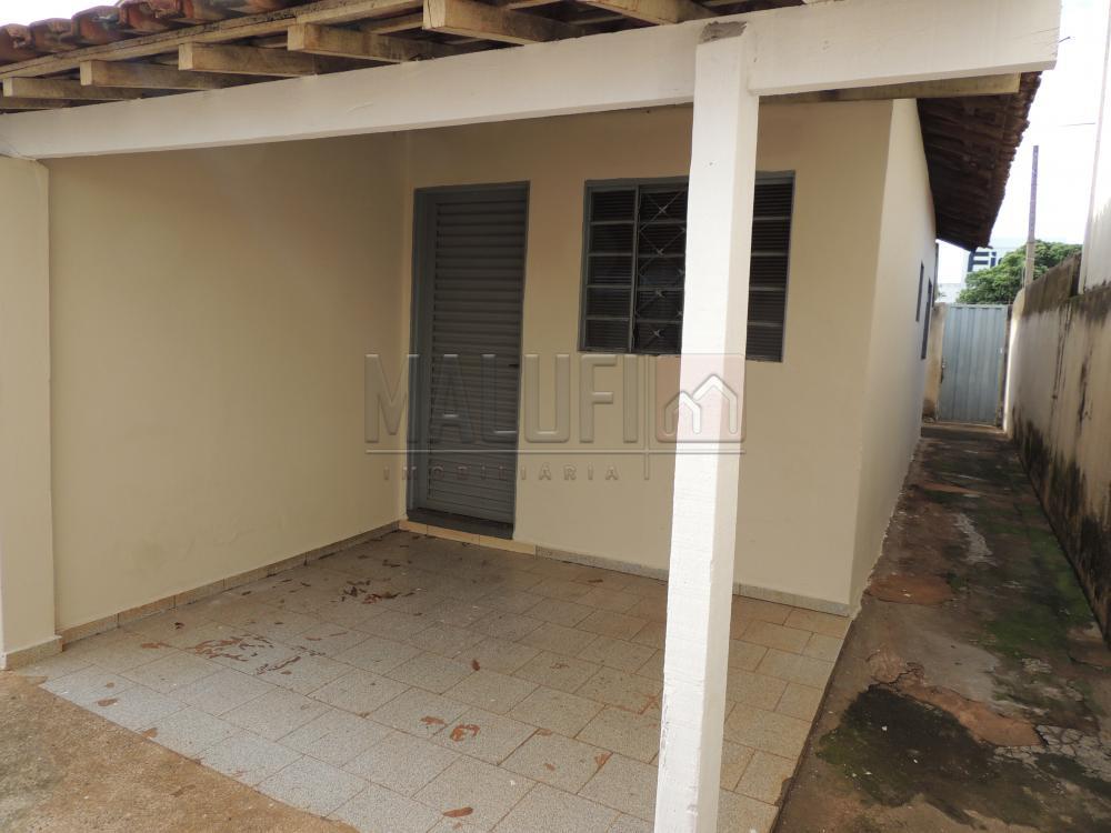 Alugar Casas / Padrão em Olímpia apenas R$ 800,00 - Foto 9