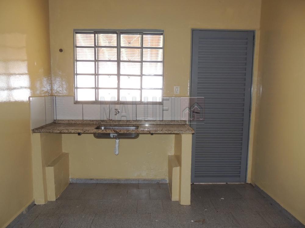 Alugar Casas / Padrão em Olímpia apenas R$ 800,00 - Foto 4