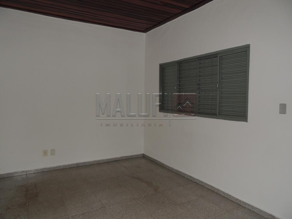 Alugar Casas / Padrão em Olímpia apenas R$ 800,00 - Foto 7