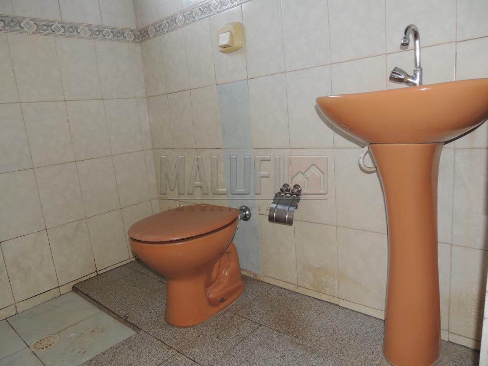 Alugar Casas / Padrão em Olímpia apenas R$ 800,00 - Foto 5