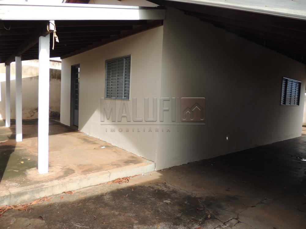 Alugar Casas / Padrão em Olímpia apenas R$ 800,00 - Foto 2