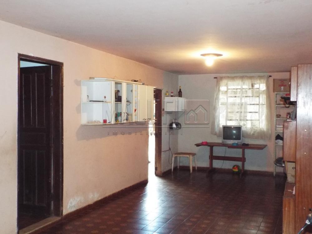 Comprar Casas / Padrão em Olímpia apenas R$ 185.000,00 - Foto 4