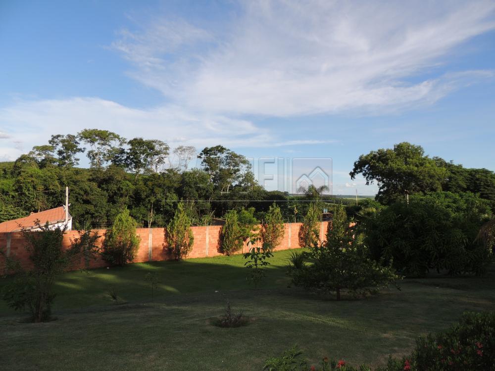 Comprar Rurais / Chácara em Olímpia apenas R$ 680.000,00 - Foto 42