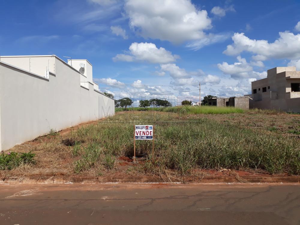 Comprar Terrenos / Padrão em Olímpia apenas R$ 120.000,00 - Foto 1
