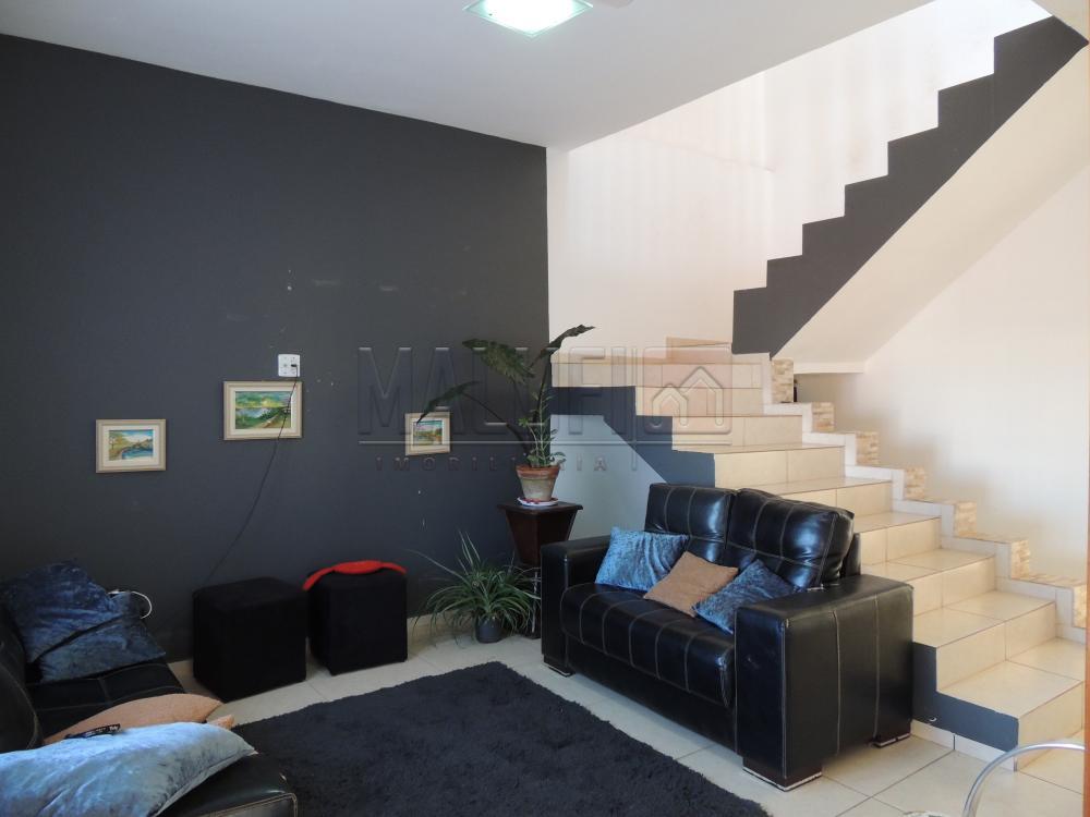 Comprar Casas / Sobrado em Olímpia apenas R$ 400.000,00 - Foto 2