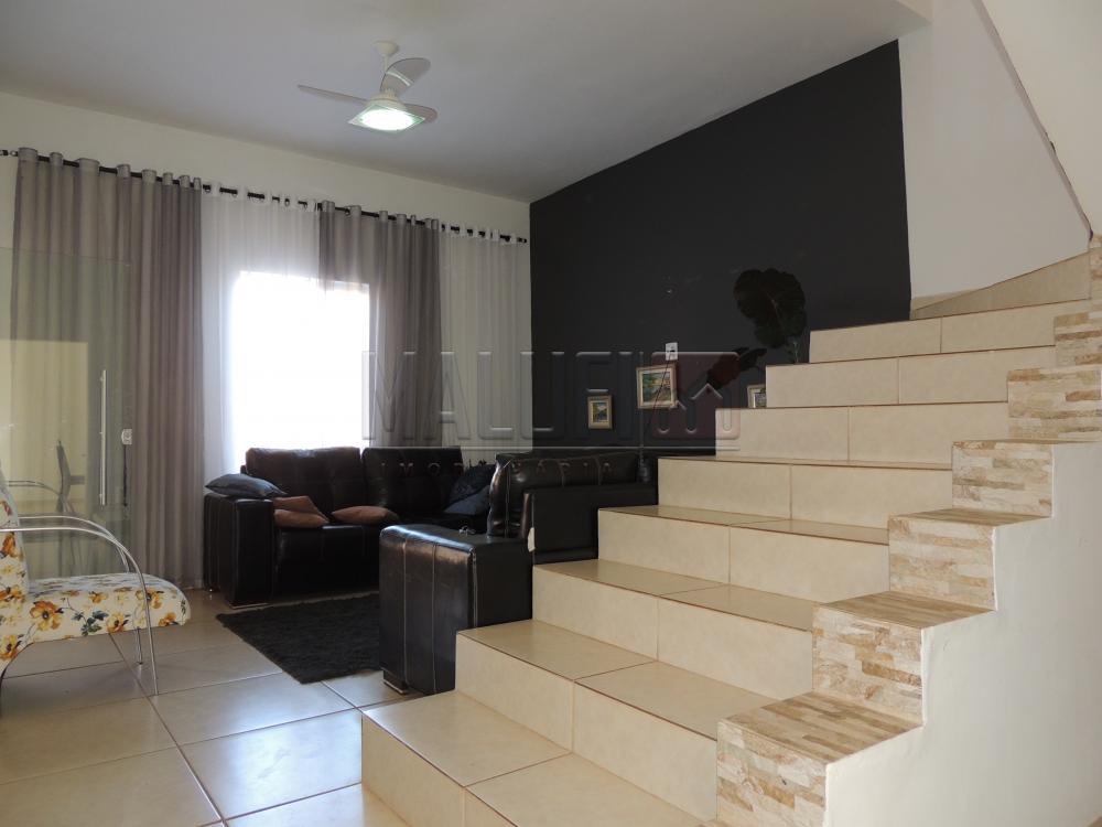 Comprar Casas / Sobrado em Olímpia apenas R$ 400.000,00 - Foto 1