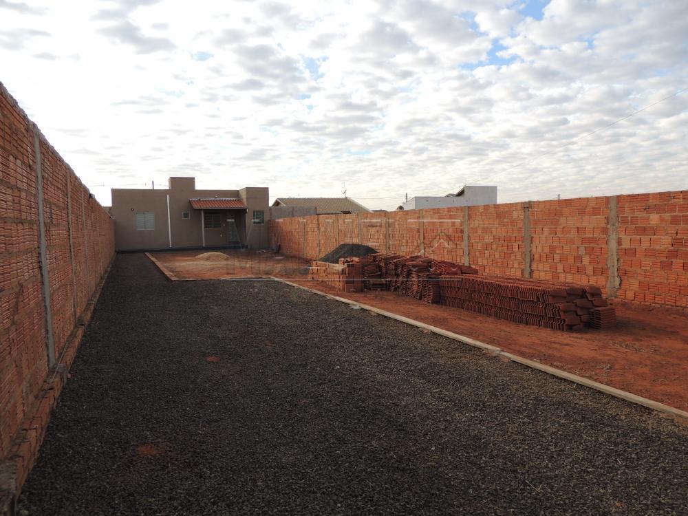 Alugar Casas / Padrão em Olímpia apenas R$ 600,00 - Foto 2
