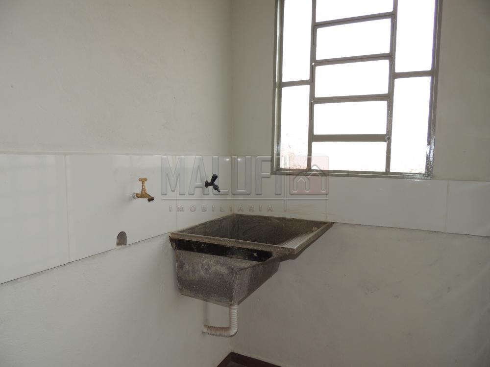 Alugar Casas / Padrão em Olímpia apenas R$ 500,00 - Foto 4