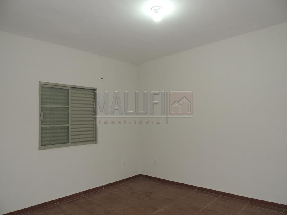 Alugar Casas / Padrão em Olímpia apenas R$ 600,00 - Foto 5