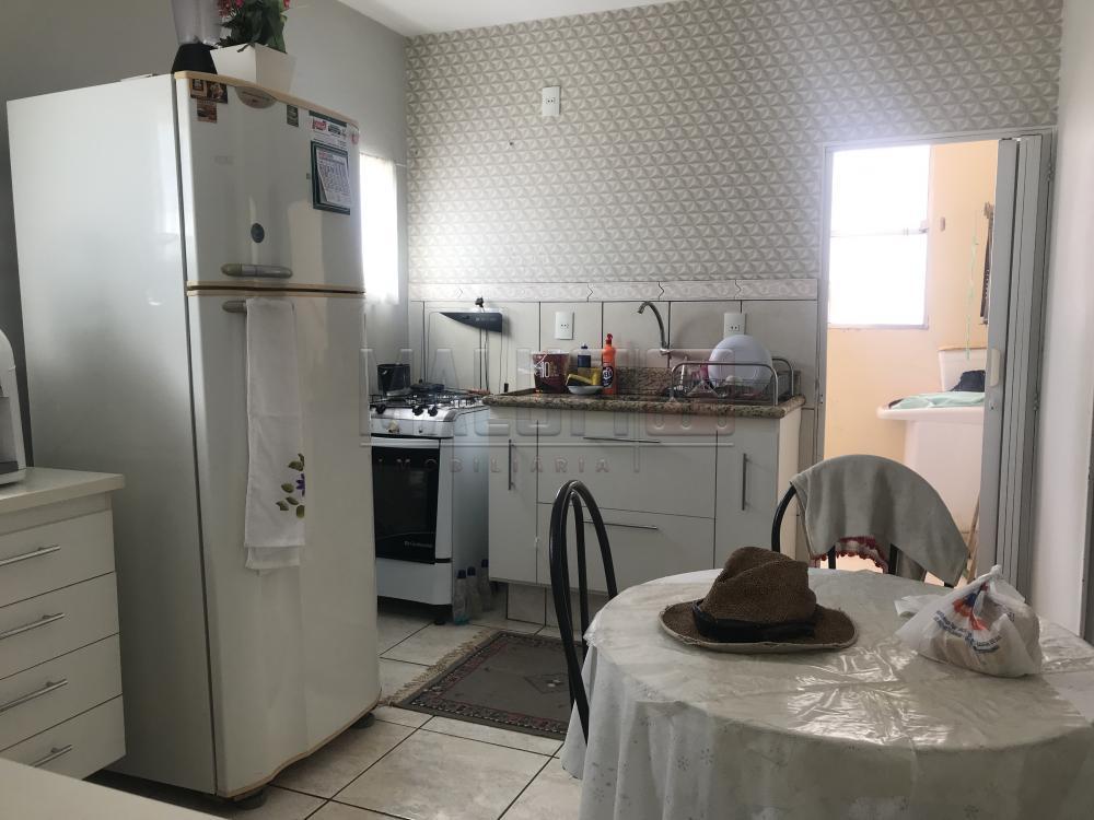 Alugar Apartamentos / Padrão em Olímpia apenas R$ 900,00 - Foto 1