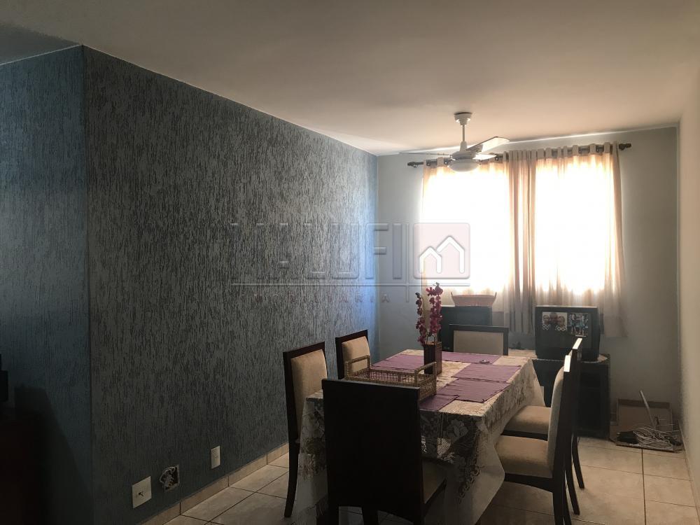 Alugar Apartamentos / Padrão em Olímpia apenas R$ 900,00 - Foto 3