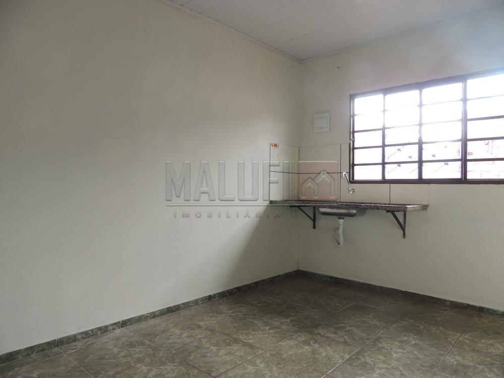 Alugar Casas / Padrão em Olímpia apenas R$ 550,00 - Foto 2