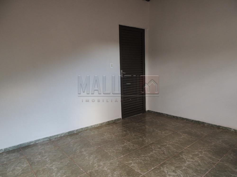 Alugar Casas / Padrão em Olímpia apenas R$ 550,00 - Foto 3