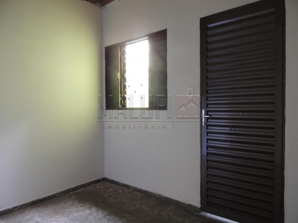 Alugar Casas / Padrão em Olímpia apenas R$ 550,00 - Foto 4