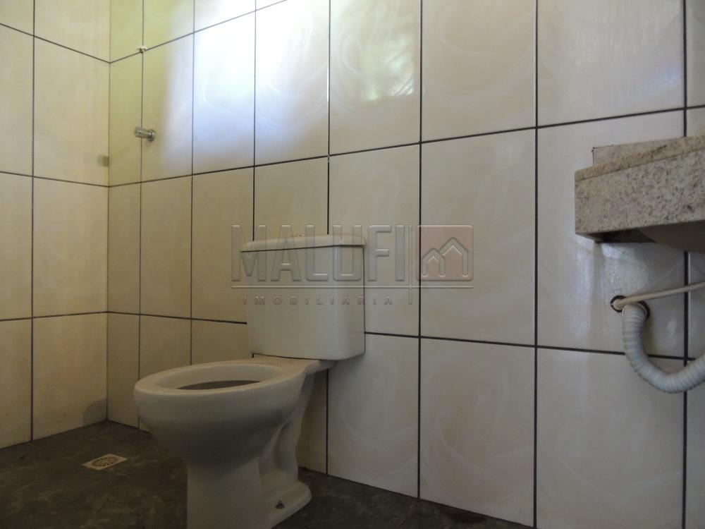 Alugar Casas / Padrão em Olímpia apenas R$ 550,00 - Foto 5