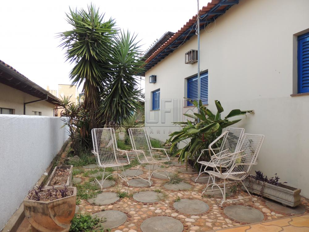 Alugar Casas / Padrão em Olímpia apenas R$ 2.500,00 - Foto 17