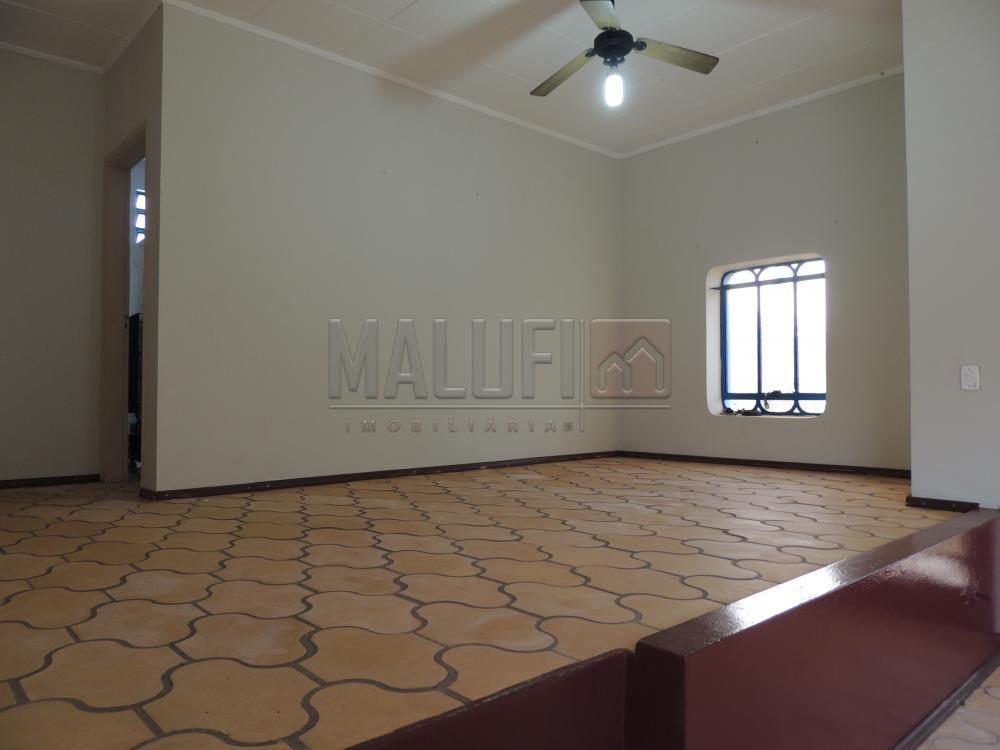 Alugar Casas / Padrão em Olímpia apenas R$ 2.500,00 - Foto 2