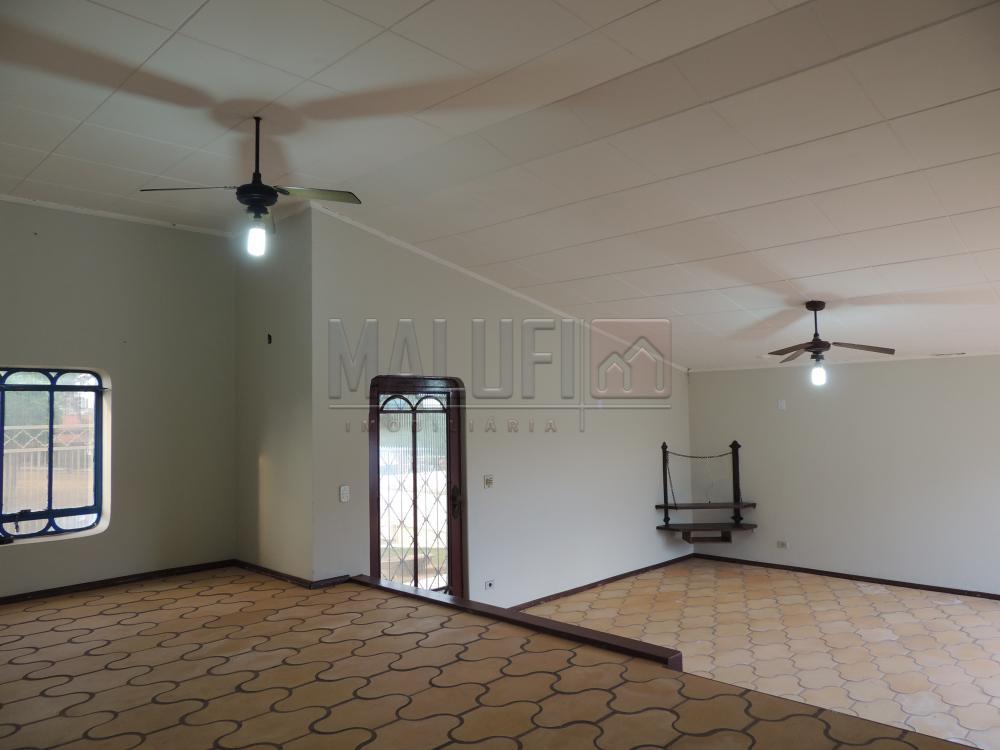 Alugar Casas / Padrão em Olímpia apenas R$ 2.500,00 - Foto 3
