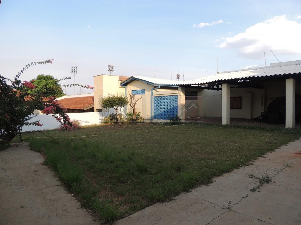 Alugar Casas / Padrão em Olímpia apenas R$ 2.500,00 - Foto 20