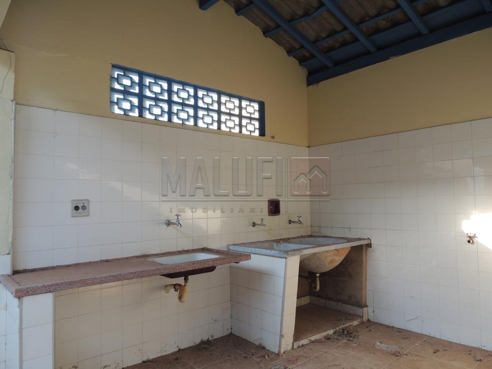 Alugar Casas / Padrão em Olímpia apenas R$ 2.500,00 - Foto 24