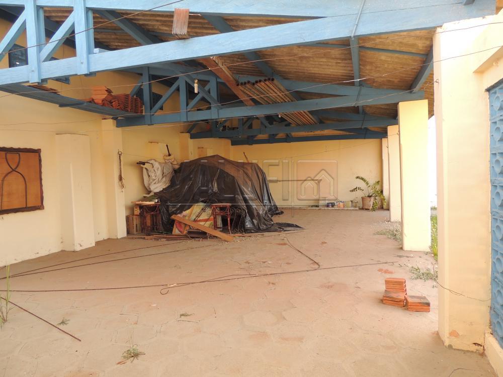 Alugar Casas / Padrão em Olímpia apenas R$ 2.500,00 - Foto 26