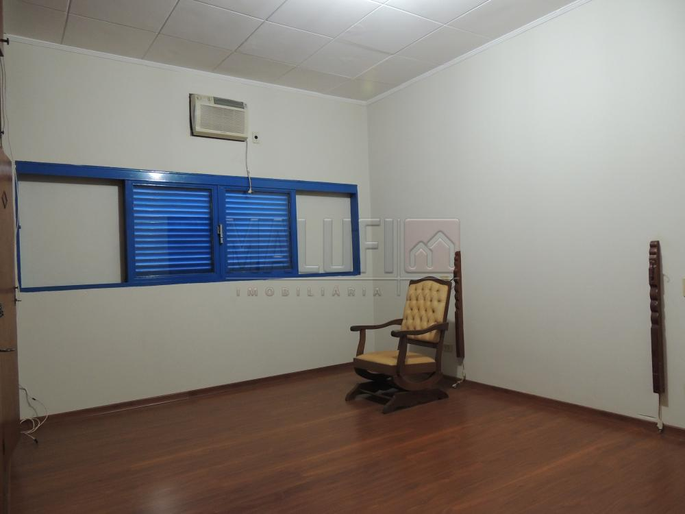 Alugar Casas / Padrão em Olímpia apenas R$ 2.500,00 - Foto 14