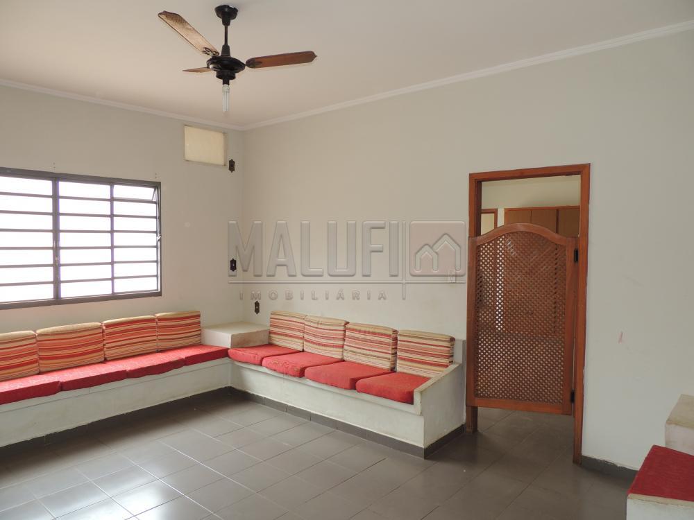 Alugar Casas / Padrão em Olímpia apenas R$ 1.600,00 - Foto 3