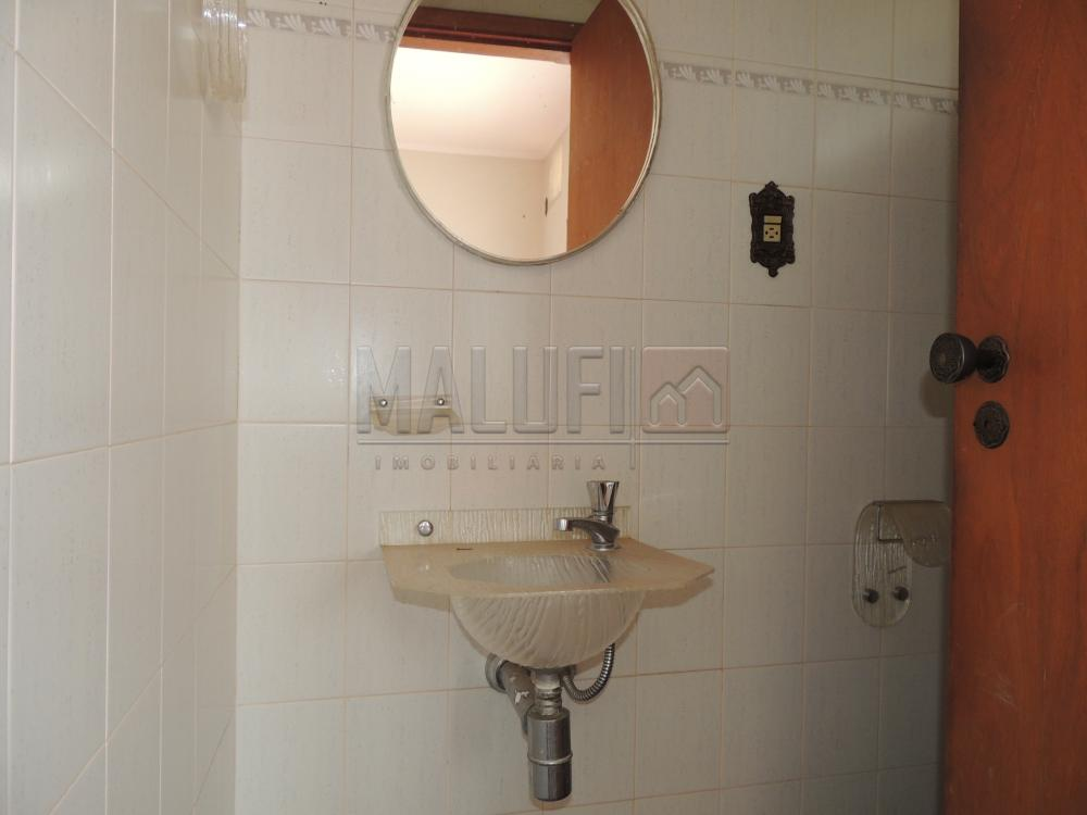 Alugar Casas / Padrão em Olímpia apenas R$ 1.600,00 - Foto 5