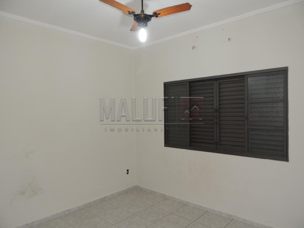Alugar Casas / Padrão em Olímpia apenas R$ 1.600,00 - Foto 11